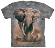 The Mountain T-Shirt African Elephant 105959