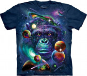 The Mountain T-Shirt Cosmic Chimp 104875