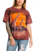 The Mountain T-Shirt Sundown 105906